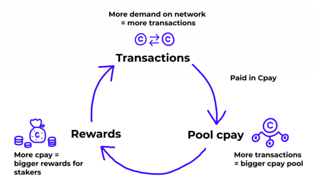 Transactions, CPAY pool and rewards cycle