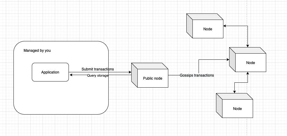 Public node access to blockchain