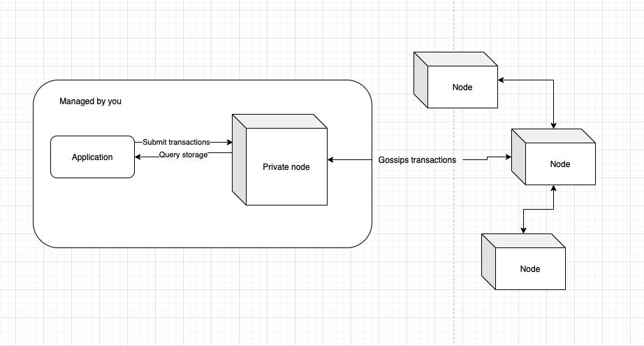 Private node access to blockchain